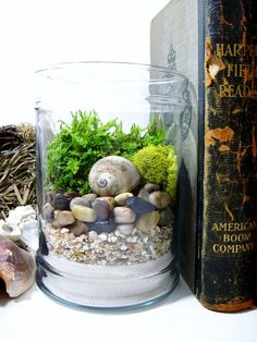 Layered Beach Treasures - I need to do this with all the cool shells we found last weekend <3