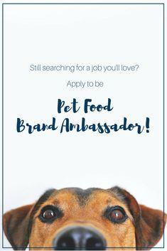 17 Calling All Animal Lovers Ideas Animal Lover Pets Presentation Skills