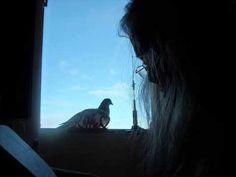 "Iris DeMent - ""Sweet Hour of Prayer"""