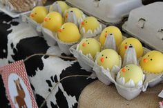 Little chick eggs at a farm birthday party!  See more party planning ideas at CatchMyParty.com!