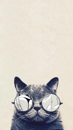 Cool-Cat-Glasses-iPhone-6-Plus-HD-Wallpaper
