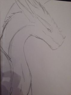 rough sketch 11