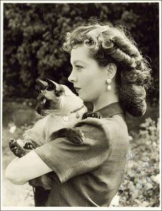 vivien leigh with a cat - I LOVE Vivien as Scarlette O'Hara but she was great in so many other parts. Love Her.