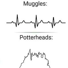 And only potterheads care enough to make an accurate EKG tracing. Harry Potter Tumblr, Harry Potter World, Harry Potter Kunst, Magia Harry Potter, Estilo Harry Potter, Harry Potter Feels, Mundo Harry Potter, Harry Potter Drawings, Harry Potter Jokes