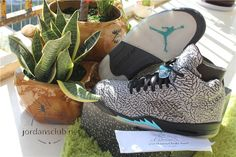 http://www.jordansclub.net/authentic-air-jordan-v-retro-3lab5-shoes-p-3097.html