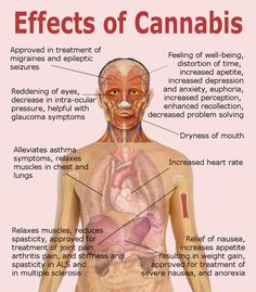 Useful And Harmful Effects Of Cannabis.  See more at http://seizures.dolyan.com/seizure-disorders-and-medical-marijuana/