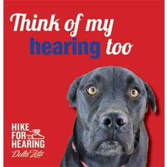 Hike day bibs   DZ Hike for Hearing   Pinterest   Bibs