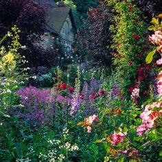 wpid14379-Sacar una foto-Gardens-FBED021-nicola-stocken.jpg