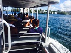 Snorkel tours and dolphin watching cruises