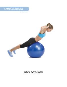 """Exercise Ball Workout Poster for Women 19""""X27"""" Laminated - FITWIRR SHOP"""