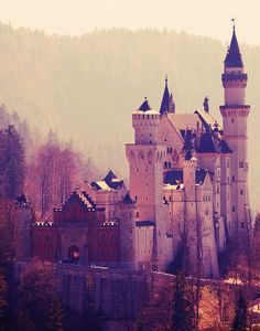 The Neuschwanstein castle | Bavaria, Germany