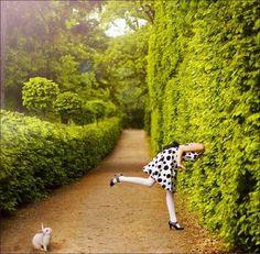 A peek down the rabbit hole...