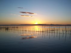 Albufera Sunset