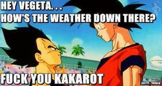 """LOL Haha Vegeta Except according to the Dragon Ball Wiki, Vegeta is 5'5"""" and Goku is only 5'9"""""""