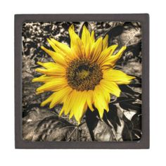 Choose from a variety of Sunflower gift boxes on Zazzle. Our keepsake boxes are great places to hold valuables like jewelry. Gift Boxes For Sale, Sunflower Gifts, Keepsake Boxes, Great Places, Jewelry Box, Tapestry, Painting, Art, Hanging Tapestry