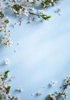 Fresco,Pequeño fresco,H5 background,La literatura y el arte,Flores,H5,H5,Simple,Azul