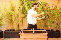 Imagen del paso Diy Y Manualidades, Pallet Designs, Garden, Shape, Planters, Trends, Vegetables Garden, Vegetable Gardening, Diy