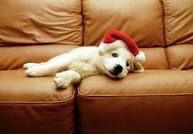 Sorry Santa, but I'm to tired to wrap presents....ha shoo bee doo bee doo bee