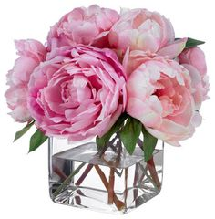 Pink Champagne Peonies - contemporary - plants - Diane James Home