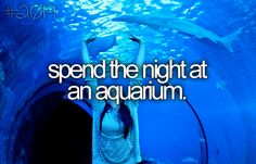 Spend the night at an aquarium. [ ]  this would be amazing to do