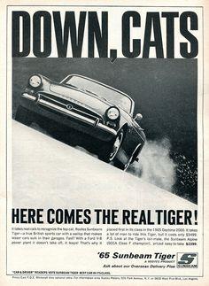 1965 Sunbeam Tiger Advertisement Road & Track June 1965   Flickr - Photo Sharing!