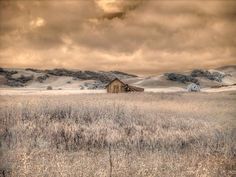 Barn photo, weathered barn photography, rustic home decor, infrared photography, fine art photograph Barn Photography, Landscape Photography, Infrared Photography, Fields Of Gold, World Of Color, Rustic Barn, Beautiful Places, Beautiful Scenery, Image