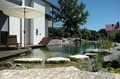 Niedermaier natural pool