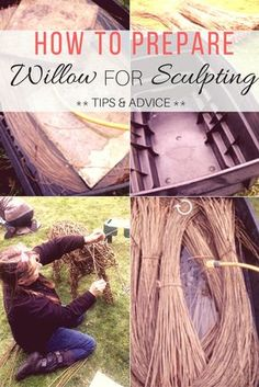 Hi there!I thought it might be helpful for some of you who are new to working with willow, especially the sculptural side of things, to know which type of will