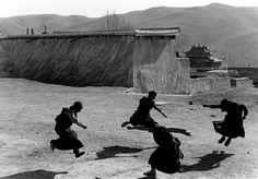 Jeunes moines bouddhistes, Tibet, 2008, photo: Yang Yankang