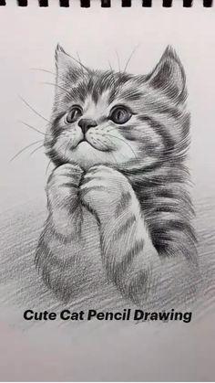 Art Drawings Beautiful, Art Drawings Sketches Simple, Pencil Art Drawings, Animal Drawings, Kitten Drawing, Art Painting Gallery, Drawing Techniques, Animal Paintings, Cat Art
