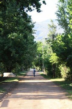 Rush hour in Greyton - Western Cape - South Africa (140 km from Cape Town)