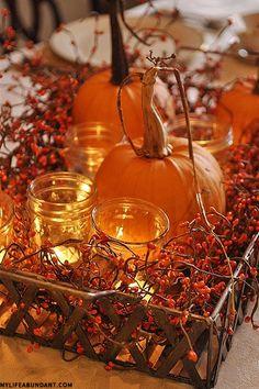#sainsburys #autumndreamhome