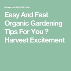 Easy And Fast Organic Gardening Tips For You ⋆ Harvest Excitement