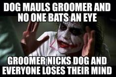 Groomer problems