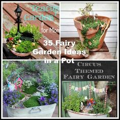 Psst! Do you believe in fairies? Most of us have seen or read Peter Pan and remember clapping, to say that we did. Well, here is a fun craft to share your love of fairies with friends and families.  Body Content Under 1st Paragraph (under_first_paragraph 103)  Fairy gardens are charming and a perfect DIY project to do with your children. Many of the materials you need, you likely already have on hand, such as a clay pot or other large container and small plants.  One of the great things…