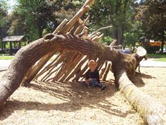 Guest Post on Nature Play - Learning Landscapes - Professional ...