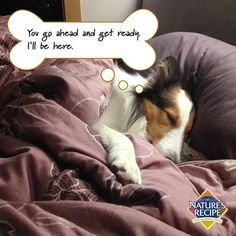 Does your #pet make it hard to get out of bed in the morning?