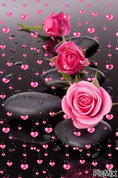 kalp ve gül – PicMix – Blumen Dekoration Beautiful Rose Flowers, Beautiful Flowers Wallpapers, Beautiful Nature Wallpaper, Pretty Wallpapers, Love Flowers, Roses Gif, Flowers Gif, Beautiful Love Pictures, Beautiful Gif