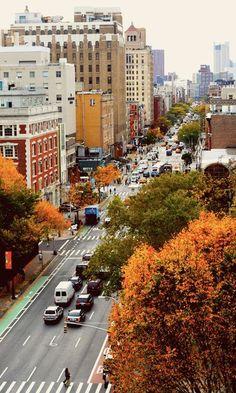 Fall feelings in they city.