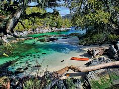 This tropical paradise only looks like the Caribbean! Welcome to Calvert Island, British Columbia: one of Canada's best-kept travel secrets.