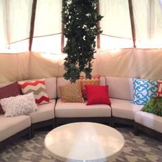 David Bromstad's fantasy backyard Outdoor Sectional, Sectional Sofa, David Bromstad, Outdoor Furniture, Outdoor Decor, Backyard, Fantasy, Decoration, Home Decor