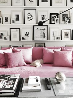 This pink sofa is so inviting (and I think the dog agrees!) And the black and white gallery wall on photo ledges!? So good. So good.