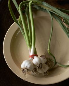 Garlic by Gemma Comas Photography