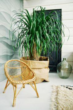 Tarja's Snowland, modern scandinavian home, stone wall, rattan chair, beni ourain carpet.