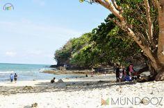 Paradise island east side - Mundooz