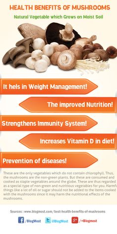 Nutrition tips, health and nutrition, fruit benefits, health benefits, heal Health Benefits Of Mushrooms, Mushroom Benefits, Nutrition Tips, Health And Nutrition, Health And Wellness, Health Eating, Health Diet, Healthy Living Tips, Healthy Tips