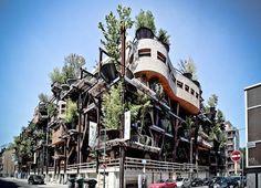 maison-arbre-luciano-pia