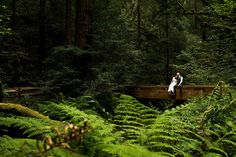 bride and groom at wedding kissing among redwoods in Muir Woods, California