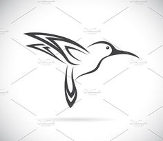 Vector image of an hummingbird  by yod67 on @creativemarket