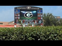 """To any college football fan, the expression """"Between The Hedges"""" conjures up images of Sanford Stadium, home of the Georgia Bulldogs.  More than 90,000 fans in the stadium, and millions more watching on television, see the famous hedges at every home game.  But what goes into growing and maintaining the state's most famous greenery?  The Monitor's Ray D'Alessio traveled to UGA in Athens to find out."""